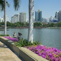 Вторая неделя. Фото 3. Таиланд. Бангкок :: Владимир Шибинский