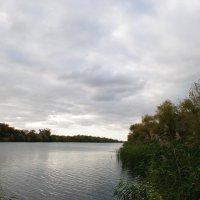 река Сухая :: Виктор ЖИГУЛИН.