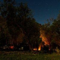 Ночной лагерь :: Елена Сергеева
