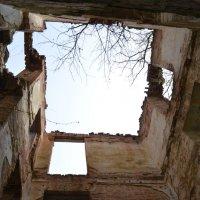 Развалины :: Тамара Мадюдина