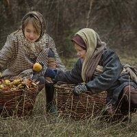 Последний урожай! :: Аркадий Краснояров