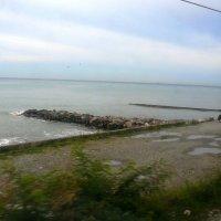 Из окна поезда :: Леонид Натапов