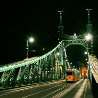 Ночь на мосту Свободы :: Николай Ярёменко