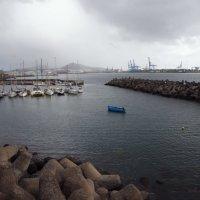 дождь в порту :: liudmila drake