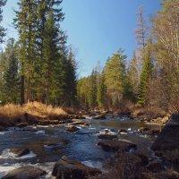 Отличная погода, горная река... :: Александр Попов