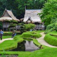 Парк в Арсене :: Zinaida Belaniuk