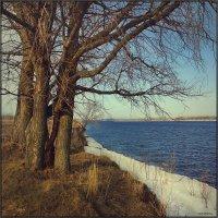 Весенний пейзаж.. :: Алексей Макшаков