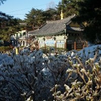 Инчхон – город в Южной Корее :: Елена Павлова (Смолова)