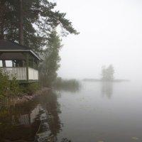 первое туманное утро августа :: liudmila drake