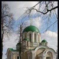 *** :: Алексей Дмитриев