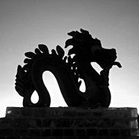 Ледяной дракон. :: bemam *