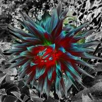 Сказочный цветок :: Лара Амелина