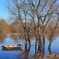 Приплыла из детства лодка... :: Лесо-Вед (Баранов)