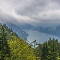 Швейцария. Вид из фуникулера на гору Пилатус. :: Наталья Иванова