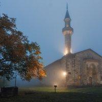 Мечеть Мухамед Узбек Хана :: Владимир Колесников