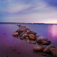 Landscape Tallinn :: Oleg Pienko