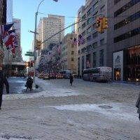 Нью Йорк  снег выпал :: Виталий  Селиванов