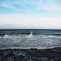 Зеленоградск. О море, я в восторге от твоего безбрежия и красы :: Маргарита Батырева