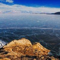 Морщины на лике озера :: Анатолий Иргл