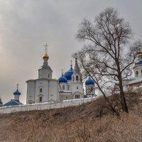 пасмурный апрель в Боголюбове :: Сергей Цветков