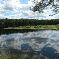 *В реку смотрятся облака* :: Вячеслав