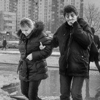 Подруги :: Алексей Окунеев