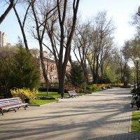 Воскресное утро, апрель (на ростовской набережной) :: Леонид