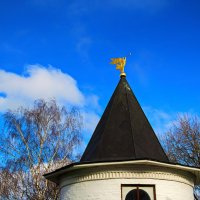 Башня с флюгером. :: Анатолий. Chesnavik.