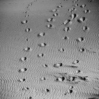 следы на песке :: Алеся Юрьевна