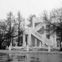Город Мурманск. Памятник жертвам интервенции 1918—1920 годов. :: Анна Приходько