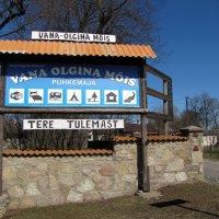 Старое Ольгино :: veera (veerra)