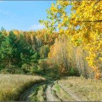 Осень, осень :: Александр Лихачёв