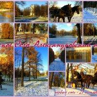 В Александровском парке Царского Села :: Сергей
