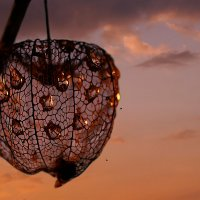Я люблю тебя, жизнь! И надеюсь, что это взаимно! :: Татьяна Кадочникова