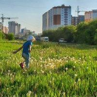 Растем - и ребенок, и город. Кемерово, июнь :: Edward Metlinov