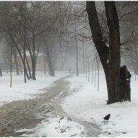 Утро 8 января :: Татьяна Найдёнова