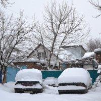 И на юге,иногда,бывает снег!)))) :: Береславская Елена