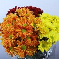Съемка для цветочного магазина :: Евгений Наглянцев