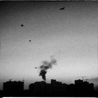 Утро над городом... :: Беспечный Ездок