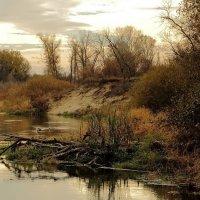 Тихо у реки :: Виктор Коршунов