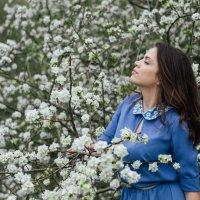 Весна-пора красивых фотографий :: Виктория Дмитриева