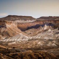 В пустыне Негев. :: Тиша