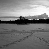 Зима ... :: Лариса Корженевская