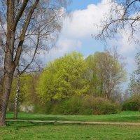 Апрель, лучшее время года..... :: Galina Dzubina