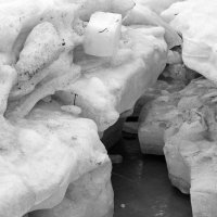 Весенний снег. :: Ирина Нафаня