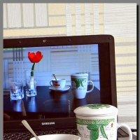 Green  tea.  English. :: Ivana