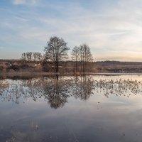 весенний берег :: Сергей Цветков