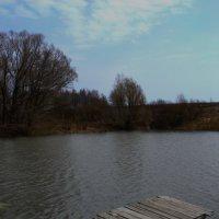 На пруду :: Константин Тимченко