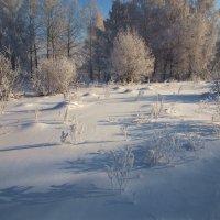 За деревьями дорога чуть виднеется... :: Александр Попов
