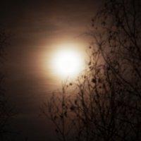 Луна :: Дмитрий